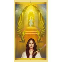 Sculpey - Starter set